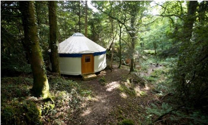 Yurtcamp in Devon