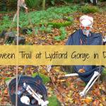 Halloween Trail at Lydford Gorge in Devon
