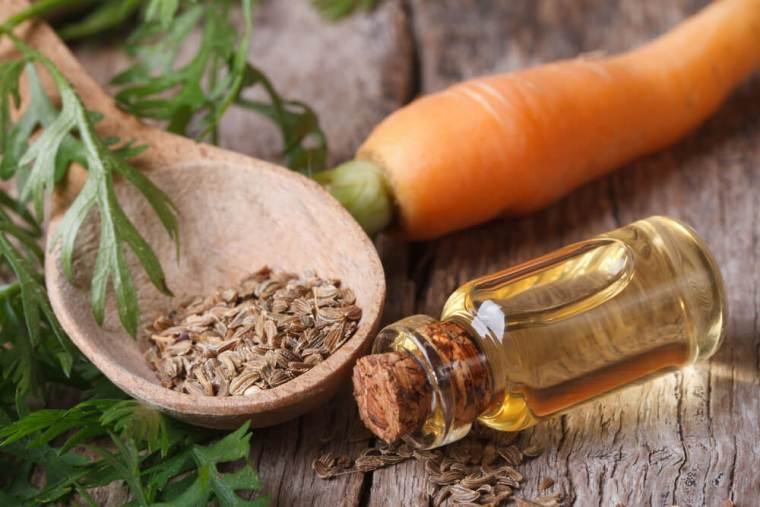 Carrot oil for your hair