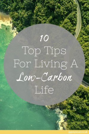 10 Top Tips for Living a Low-Carbon Life
