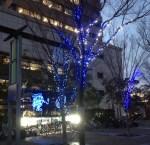 東大阪にもクリスマスが^^