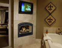 Fireplace Xtrordinair - 864 See-Thru Gas Fireplace - H2Oasis