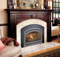 Fireplace Xtrordinair - 34 DVL Gas Fireplace Insert - H2Oasis