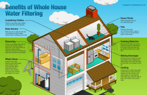 Whole House Water Filters  H2O Distributors