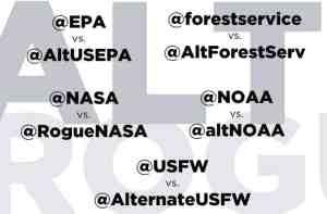 graphic showing various alt vs. normal social-media pairings