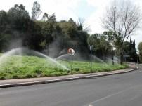 Irrigazione pubblica