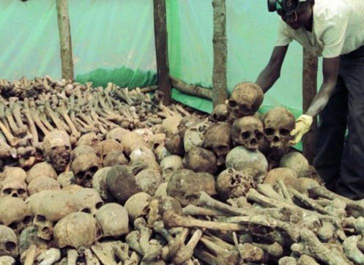 A Rwandan worker arranges human bones and skulls of victims of the 1994 genocide in Rwanda, which were unearthed by survivors, April 6, 2000.