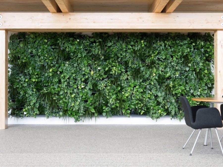 Grüne Wand, Haas Innengrün