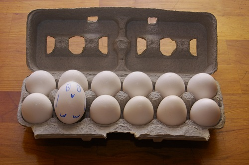 Table Eggs Production