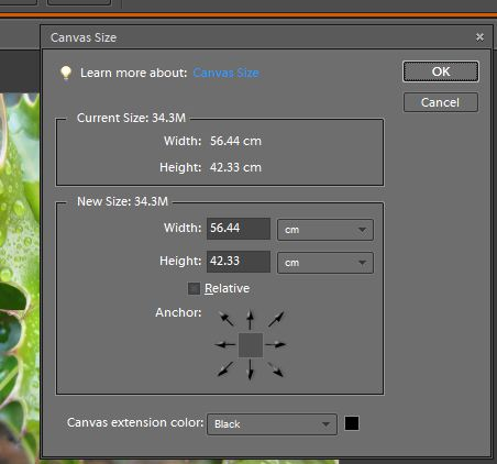 Photoshop Elements; Adding a Border and creating the effect of a ...