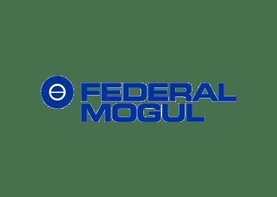 Federal Modul