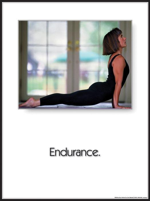 Yoga Endurance Inspirational Poster