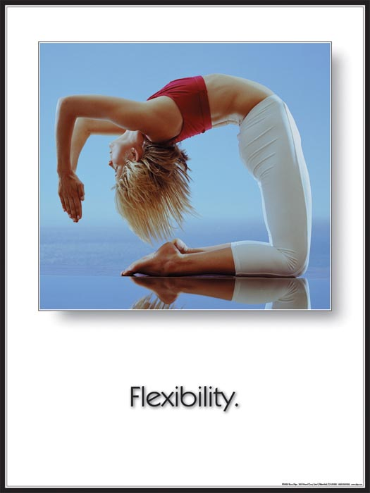 Yoga Inspirational Poster: Flexibility