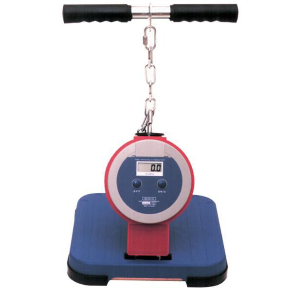 Cybex Treadmill Speed Calibration: Takei Back & Leg Dynamometer