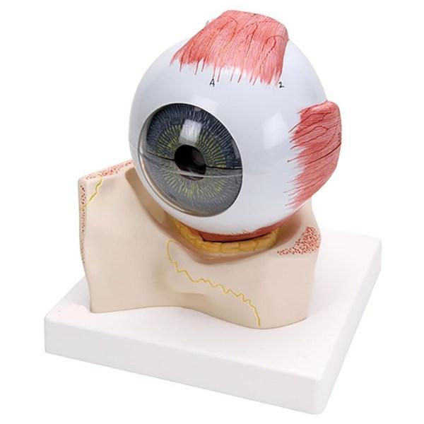 ZKH440X-Eye_7_Parts
