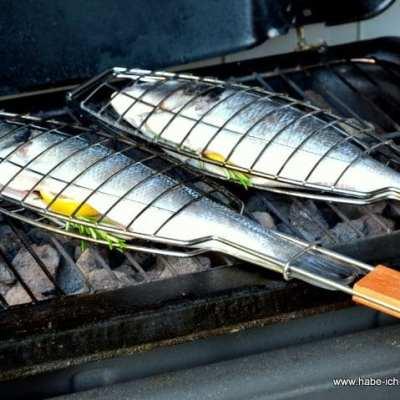 Fisch richtig Grillen