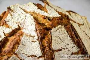 Braunhirse Brot - krachende, wild aufgerissene Kruste