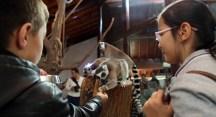 Bursa Zoo 18 yaşında