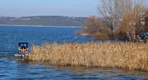 Gölyazı'da sazlık temizliği