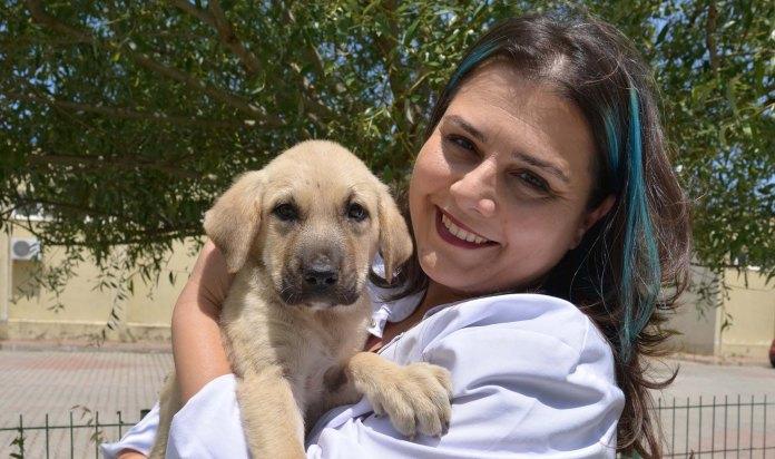 Prof.Dr.Yalçın: Hayvan sevgisi ders müfredatına alınsın