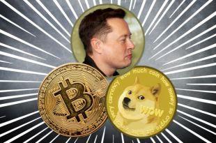 Elon Musk'ın Hamlesiyle Köpek Temalı Coinler Uçuşa Geçti