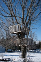 A lucky grandchild climbs in this treehouse!