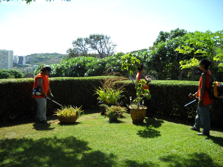 landscaping services oahu hawaii