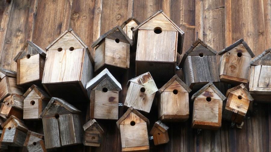 Habitat inclusif solidaire, du concept à l'accompagnement des habitants