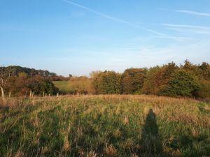 Namur – Tu veux vivre dans une communauté et contribuer à développer le projet du Chêne ?
