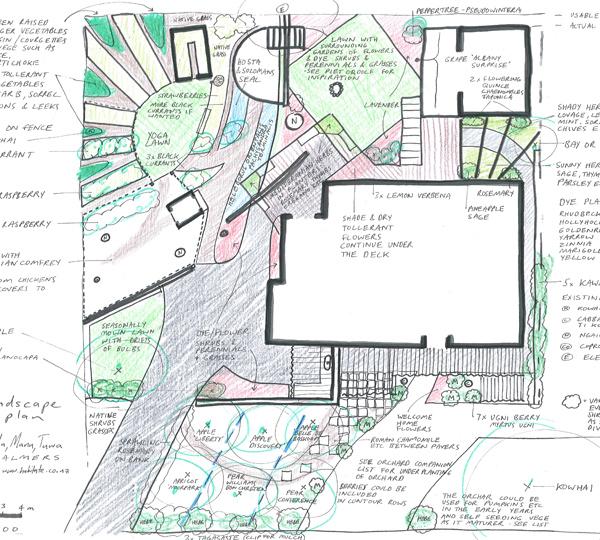 Edible Garden Design Nz Ifmore