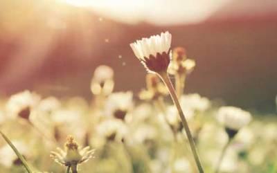 El reto de la transformación: Día 4 – Desarrolla la confianza en ti mismo