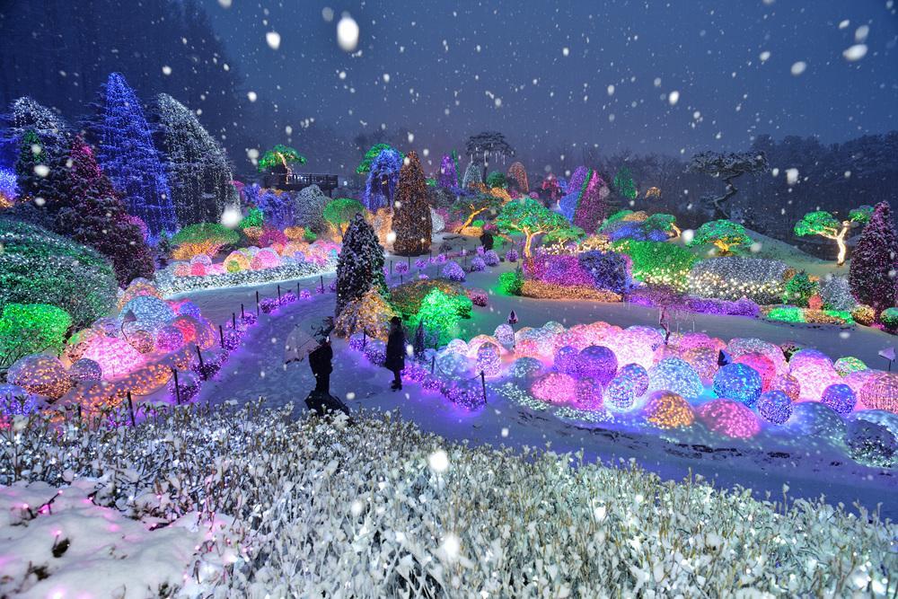The garden of morning calm Light festival