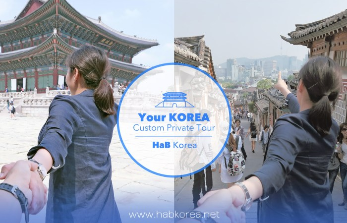 Korea custom private tour