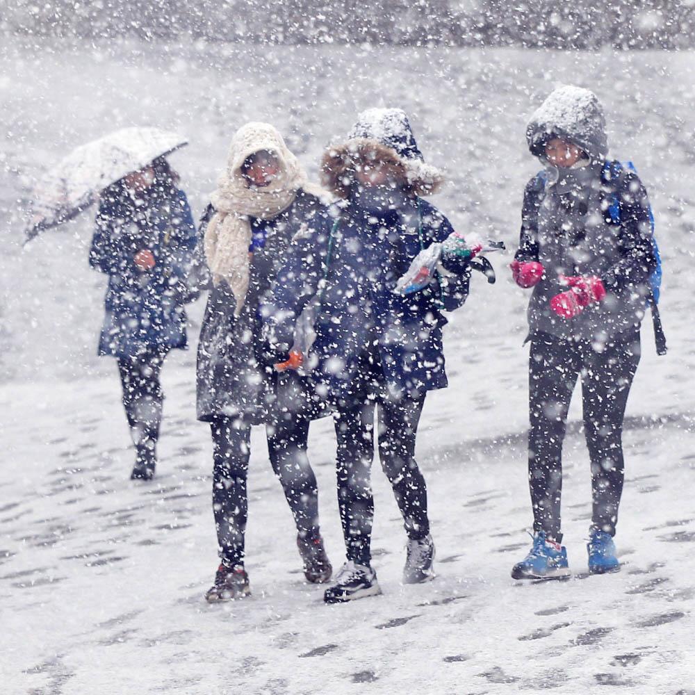 Snow Snow Seoul