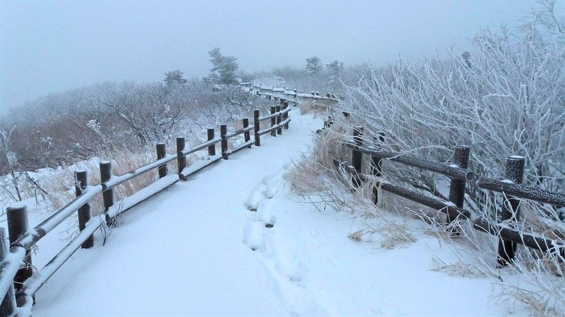[Video] It's Snowing in Korea!