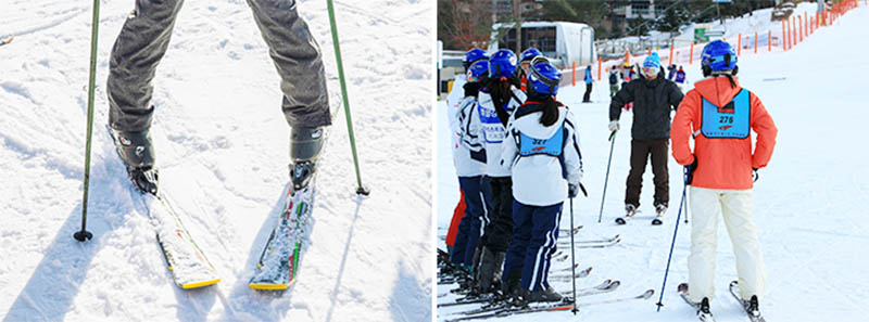 Step-by-step Guide to Ski Resorts in Korea