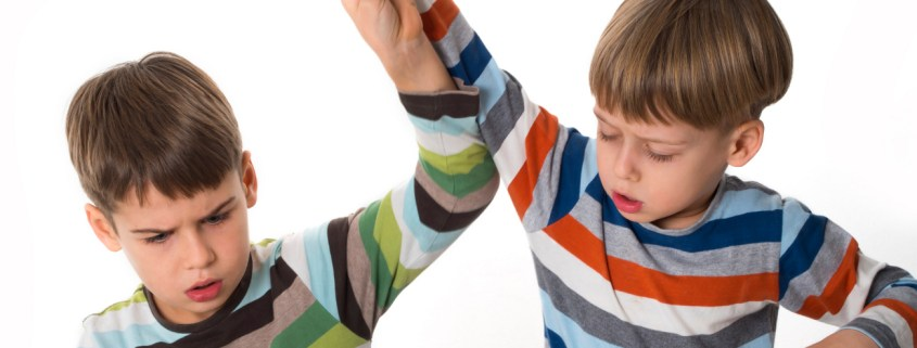 Trastornos del Comportamiento: Aproximaciones explicativas