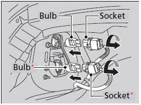Honda Accord: Brake/Taillight and Rear Turn Signal Light