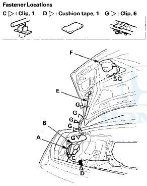 Honda Accord: Trunk Lid Opener Cable/Fuel Fill Door Opener