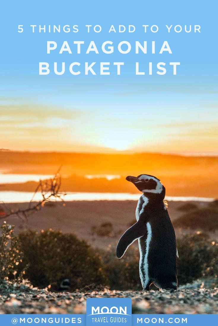 Patagonia Bucket List