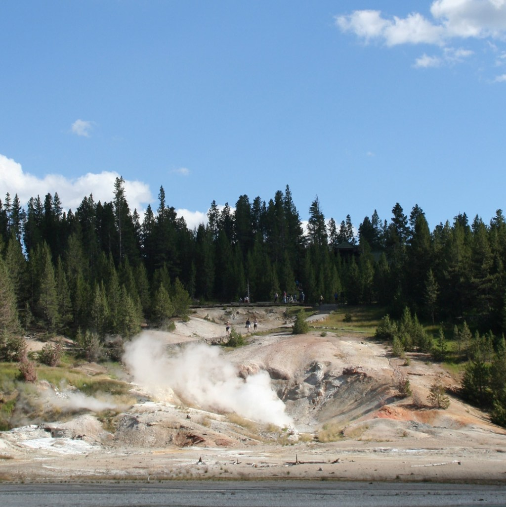 a steaming caldera on a wooded hillside
