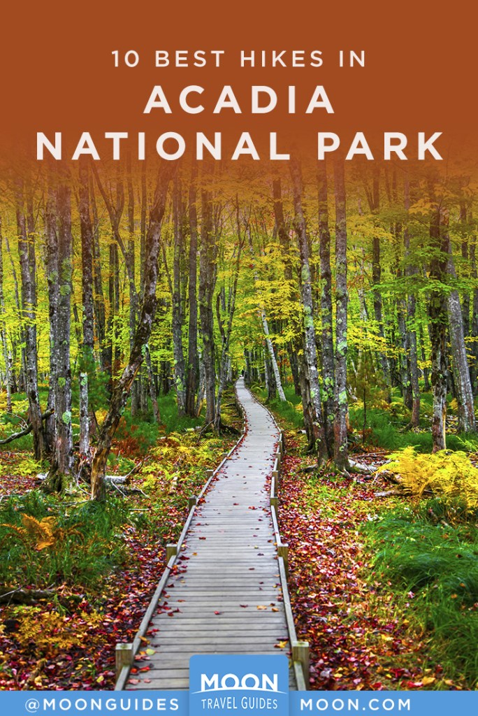 trail pathway with fall foliage in acadia national park