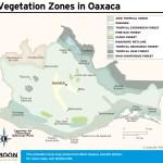 Travel map showing Vegetation Zones in Oaxaca