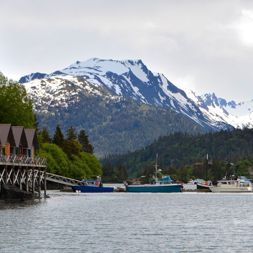 waterfront homes surrounded by mountains in Homer