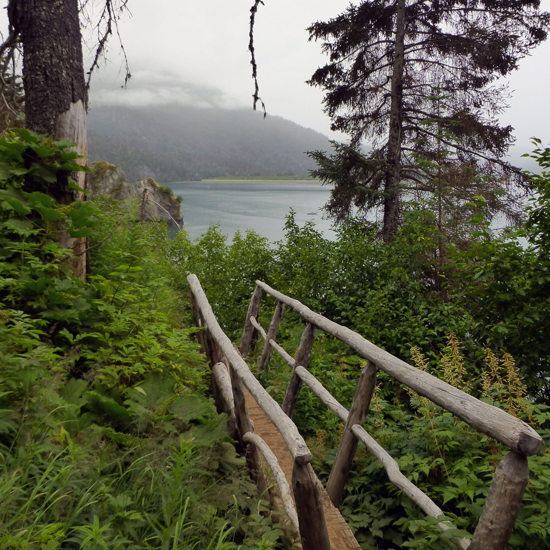 footbridge through forest with bay in the background