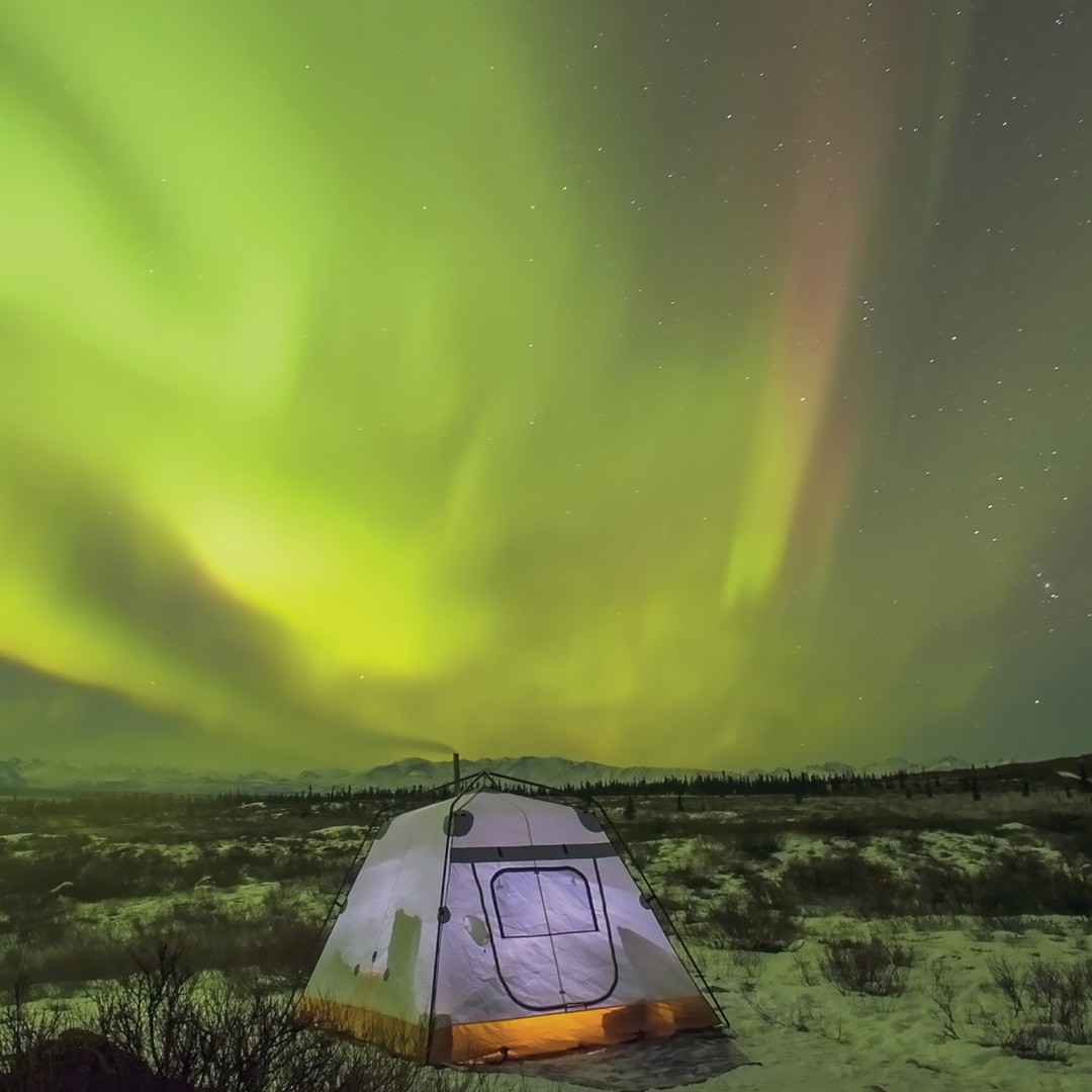 green northern lights over a tent