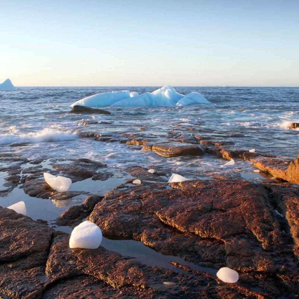 Icebergs at land's edge in Newfoundland's Iceberg Alley.