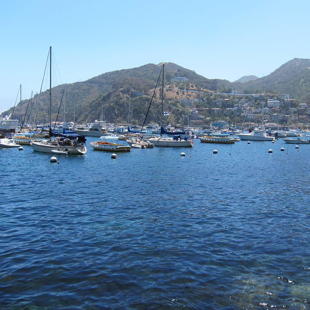 Catalina Island Harbor, featuring blue water, docked boats, and hills in the background