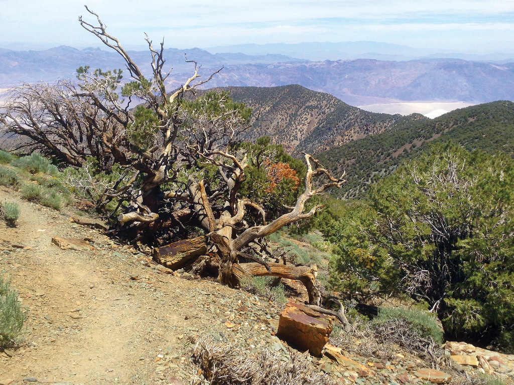 hiking trail leading to panoramic views of Death Valley