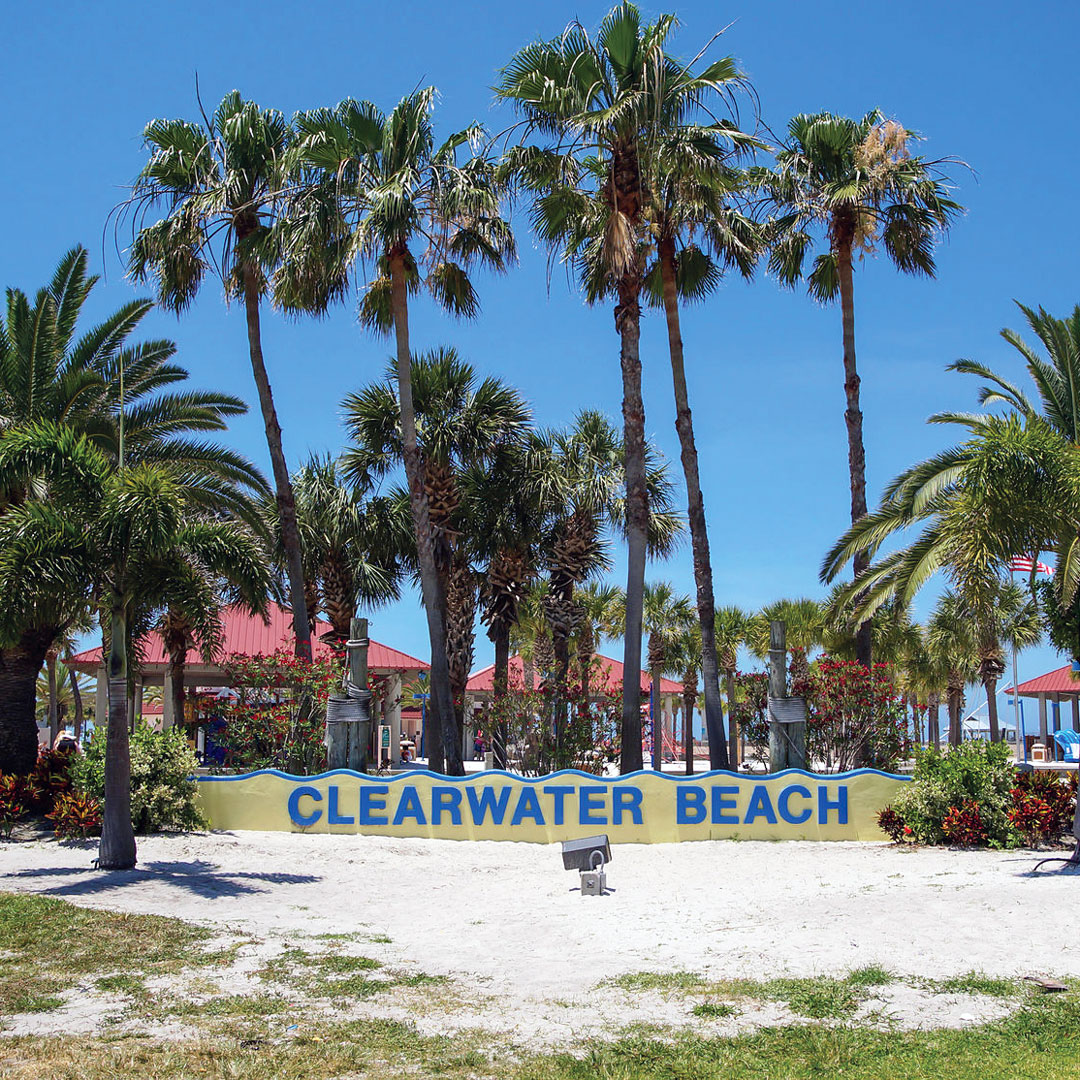 sign among palm trees at Clearwater Beach in Tampa